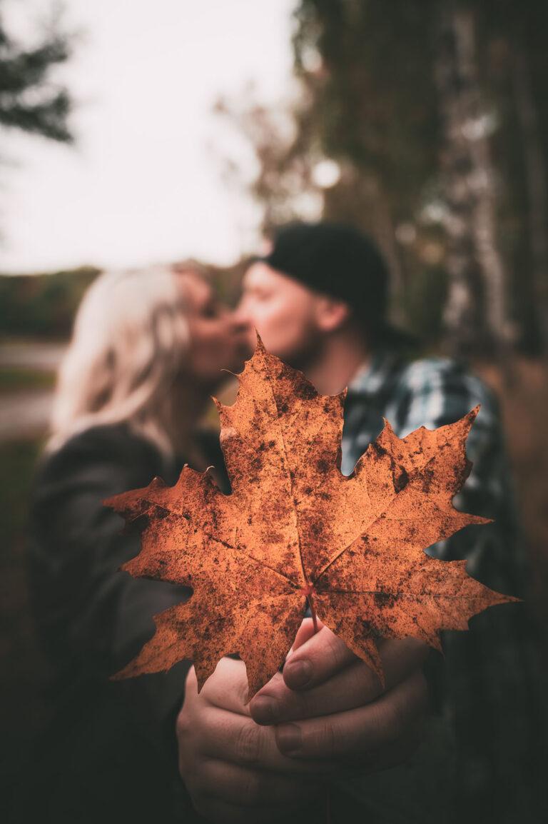 Fotograf Lutherstadt Wittenberg Paare Herbstlaub vor küssendem Pärchen